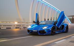 Lamborghini, машина, автомобиль