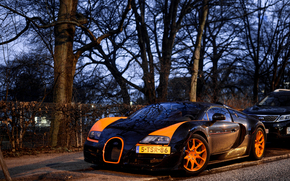 Bugatti Veyron Grand Sport Vitesse WRC, machine, car