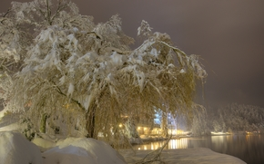 zima, śnieg, drzew, rzeka, Jezioro Bled, krajobraz