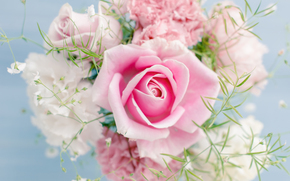 обои от Kisenok, розы, розовые, цветы, букет, композиция, белый фон