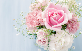 Personas de Kisenok, Roses, rosa, Flores, ramo, COMPOSICIÓN, fondo blanco