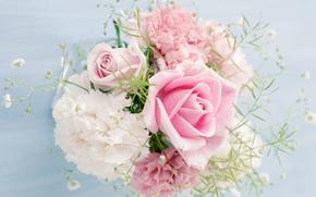 Personas Kisenok, Rosas, rosa, Flores, buquê, COMPOSIÇÃO, fundo branco