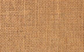 TEXTURE, Texture, fond, milieux, papier, carton, fibre, conception