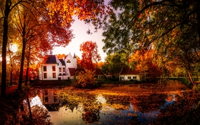 autumn, pond, home, trees, landscape