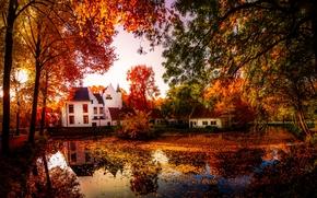 осень, пруд, дома, деревья, пейзаж