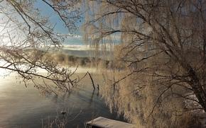 étang, coucher du soleil, arbres, hiver, paysage