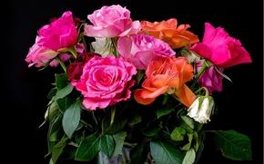розы, букет, флора