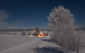winter, road, trees, home, landscape