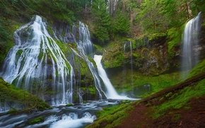 Panther Creek Falls, Gifford Pinchot National Forest, лес, деревья, водопад, природа