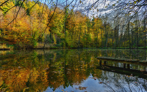 jezioro, jesień, las, drzew, most, krajobraz