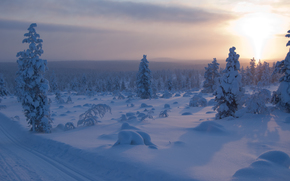 sunset, winter, trees, drifts, road, landscape