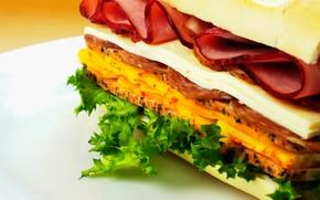 alimento, generi alimentari, cucina, Cibo, fast food, sandwich, pane