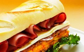 еда, продукты питания, кулинария, пища, фастфуд, бутерброд, хлеб