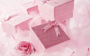праздник, коробочки, подарки, роза, пух, перышки