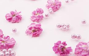 Fiori, Beads, COMPOSIZIONE, vacanza