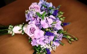 花卉, 玫瑰, 玫瑰, 组成, 花束