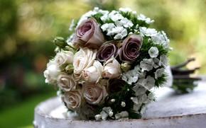 цветы, роза, розы, композиция, букет