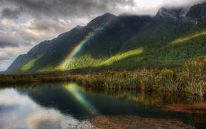 arcobaleno, pioggia, stagno, alberi