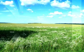 поле, небо, зелень