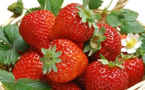 клубника, ягоды, еда, листья, корзина
