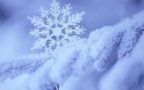 snowflake, snow, Blue, white