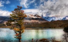 lago, Montagne, nuvole, albero