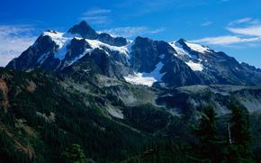 горы, лес, снег, небо, панорама