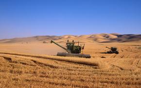 campo, kombainy, grano