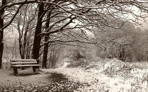 зима, скамейка, сепия