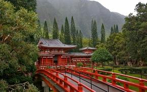 宝塔, 日本, 桥, 树