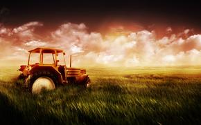 Feld, Traktor, Himmel, Gras, Weizen