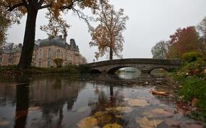 autunno, stagno, fogliame, acqua, ponte, casa, pioggia