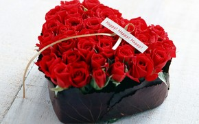 fleur, Roses, rouge