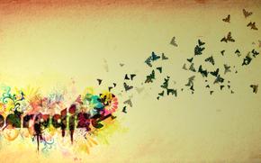 paradiso, farfalla, fiore