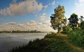 река, деревья, облака