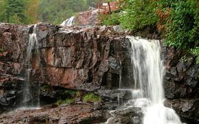 foresta, ponte, blocchi, rocce, cascata, movimento