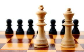 gioco, scacchi, gioco, bordo, cifre, cifre, foto close-up
