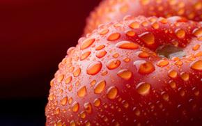 macro photo, tomatoes, vegetables, drops, fruit