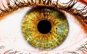 глаз, макросъёмка