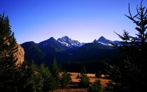 природа, поле, лес горы