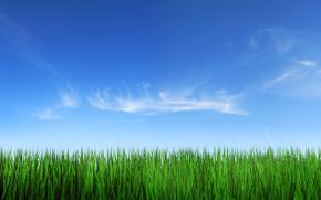 paesaggi, erba, cielo, foto, natura, nuvole, sfondo
