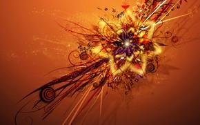 fiore, saturato, luminoso, arancione