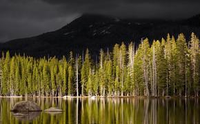 paesaggi, foto, acqua, alberi, silvicoltura, Montagne, natura