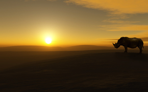 rhino, landscape, sun, desert, sky