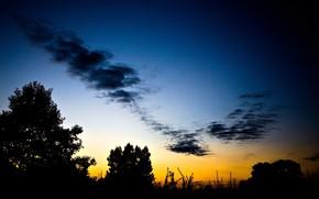 Naturaleza, paisaje, tarde, sombra, puesta del sol, Los rboles, cielo