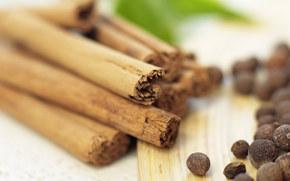 cannella, Sticks, cucina erbe, tavolo, Macro
