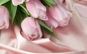 тюльпаны, скатерть, ткань, шёлк, розовый