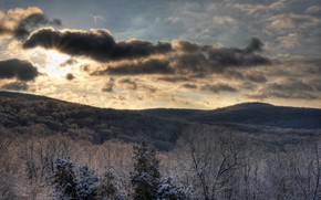 небо, лес, солнце, зима