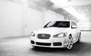 Jaguar, XF, Coche, Maquinaria, coches