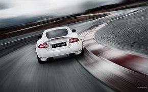 Jaguar, XK, auto, Machines, Cars